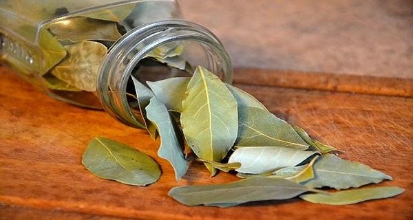 Brûler les feuilles de laurier dans la Chambre et découvrez en seulement 10 minutes!