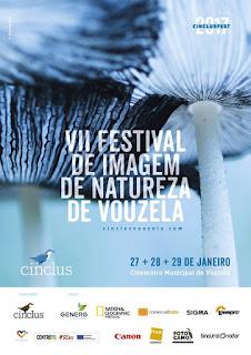 cinclusvouzela.com