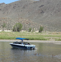 Carson valley nevada for Topaz lake fishing