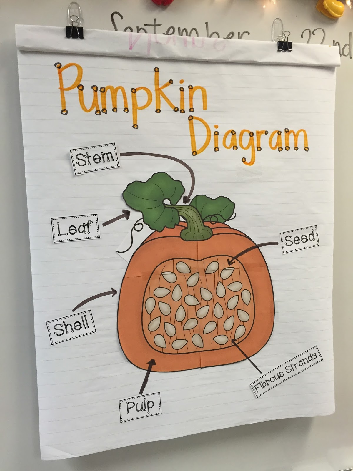 pumpkin activities and crafts will be a big part of our pumpkin day pumpkin diagram labeling  [ 1200 x 1600 Pixel ]