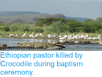 https://sciencythoughts.blogspot.com/2018/06/ethiopian-pastor-killed-by-crocodile.html