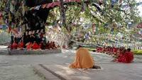 El sagrado árbol Bodhi (Nepal)
