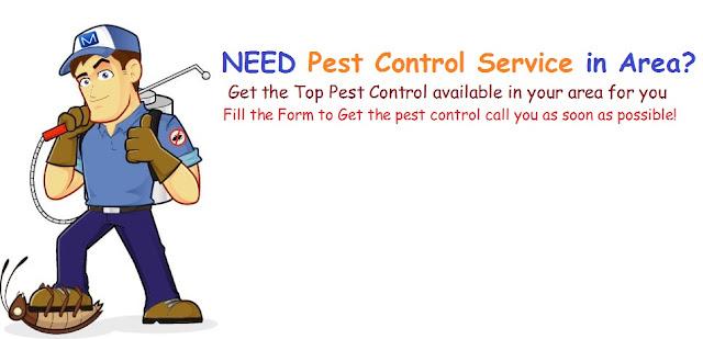 Best-Pest-control-services