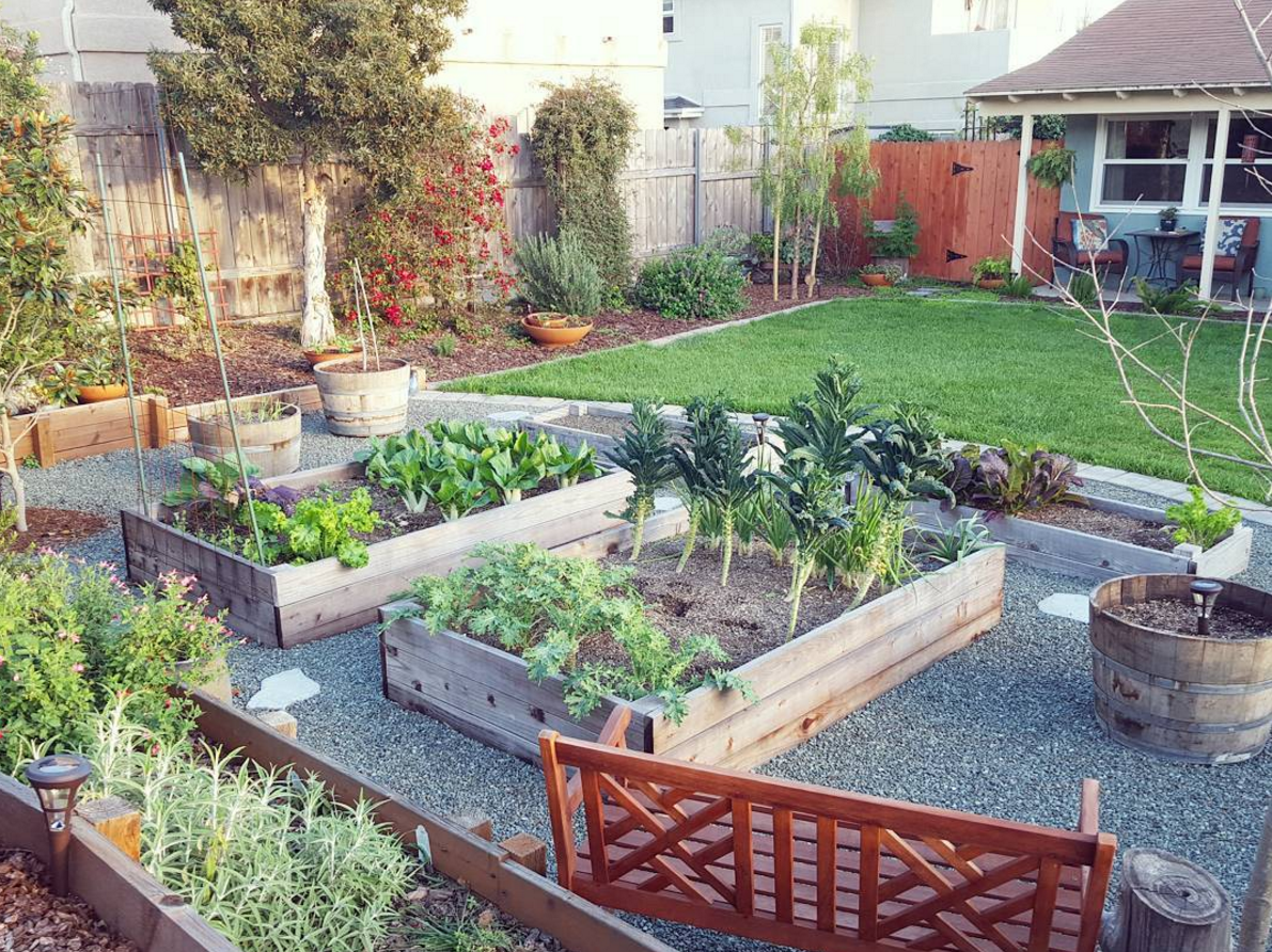 La Maison Boheme: My Favorite Backyard Farm on Instagram