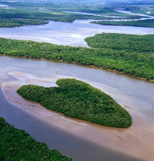 A Barris folyó szigete, Brazíliában