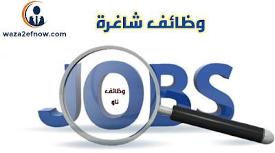 وظائف محاسبين في الامارات 2019 - خبرة وحديثي التخرج | وظائف ناو