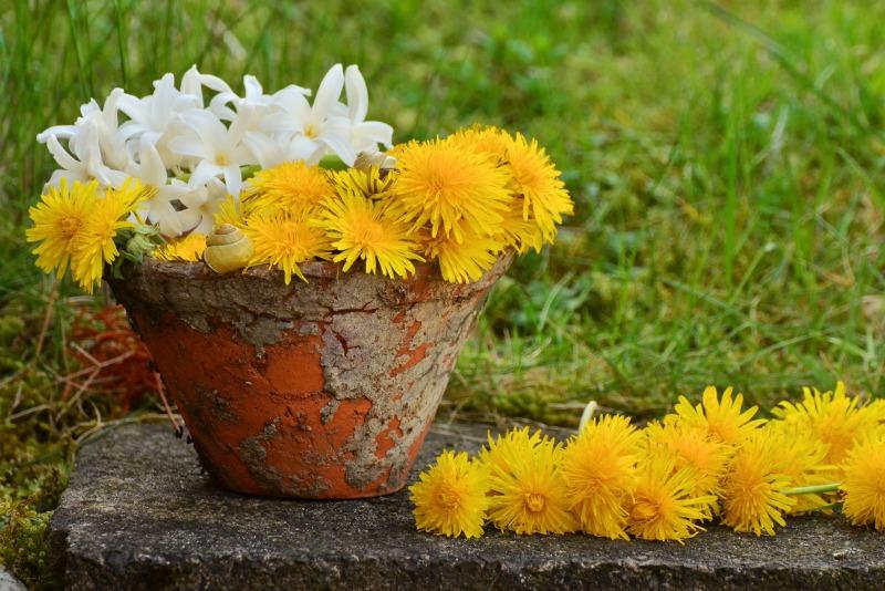 Manualidades Con Tiestos De Barro.Trucos Para Limpiar Y Decorar Viejas Macetas De Barro Guia De Jardin