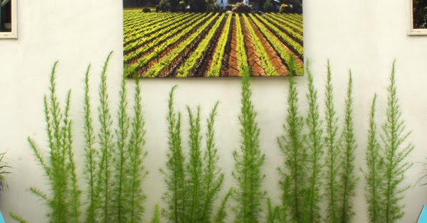 five minute friday} How to Weatherproof Art for the Outdoors | Blue ...