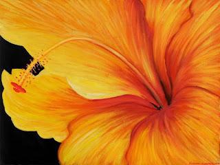 gustadoras-pinturas-coloridas-flores