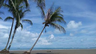 Dry season South Pacific Beach,Costa Rica