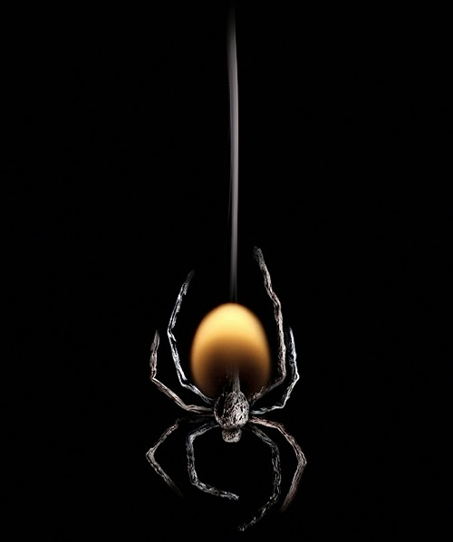 12-Match-Spider-Flame-Russian-Photographer-Illustrator-Stanislav-Aristov-PolTergejst-www-designstack-co