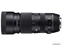 シグマ100-400mm F5-6.3 DG OS HSMの写真