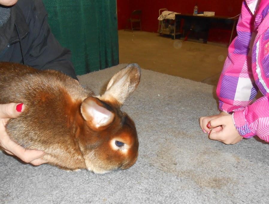 The 2015 Pennsylvania Farm Show