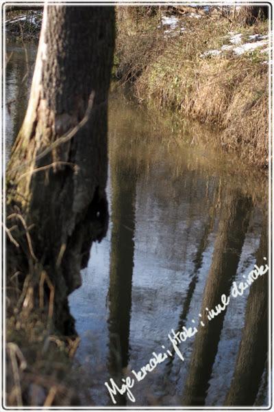 bobry, rzeka