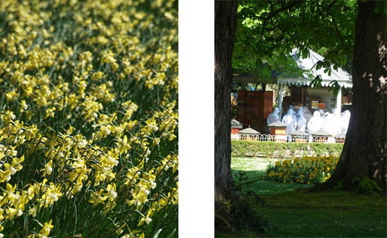 Forår i Jardin du Luxembourg