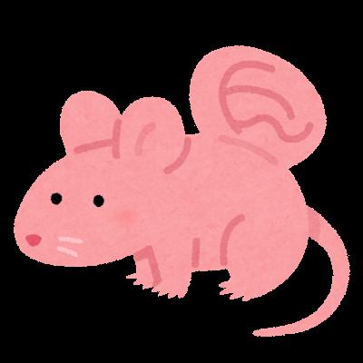 バカンティマウスのイラスト