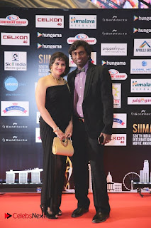 South Indian Celebrities Pictures at SIIMA 2016 DAY 1 ~ Bollywood and South Indian Cinema Actress Exclusive Picture Galleries