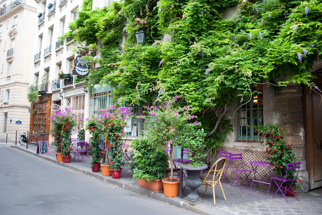 au vieux paris d'arcole restaurant purple chairs