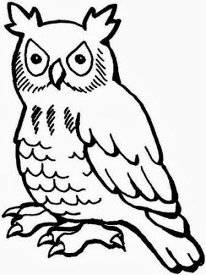 Maestra de Primaria: Dibujos de Búhos para colorear, para