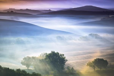 Bonito paisaje con neblina