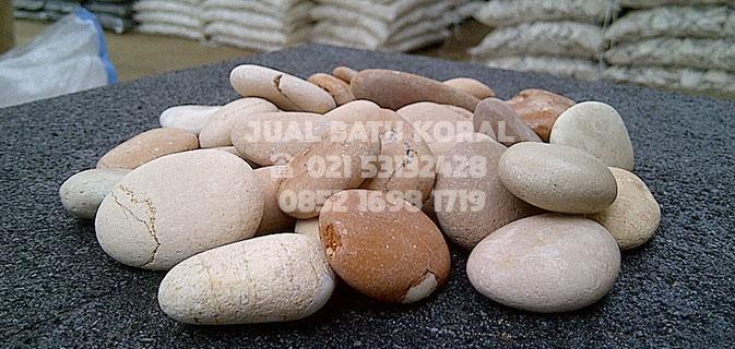 jual batu koral pink murah di jakarta