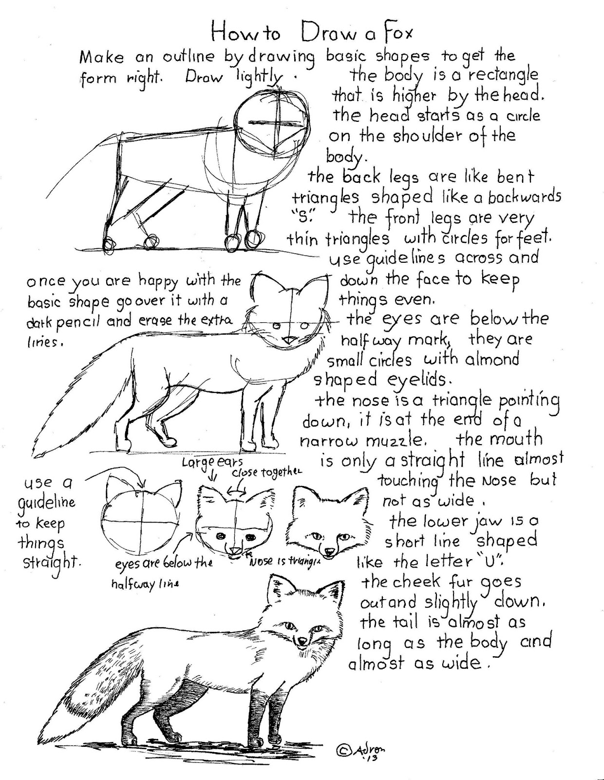 How To Draw Worksheets For The Young Artist How To Draw A Fox Worksheet