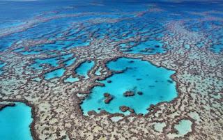 2. Great Barrier Reef