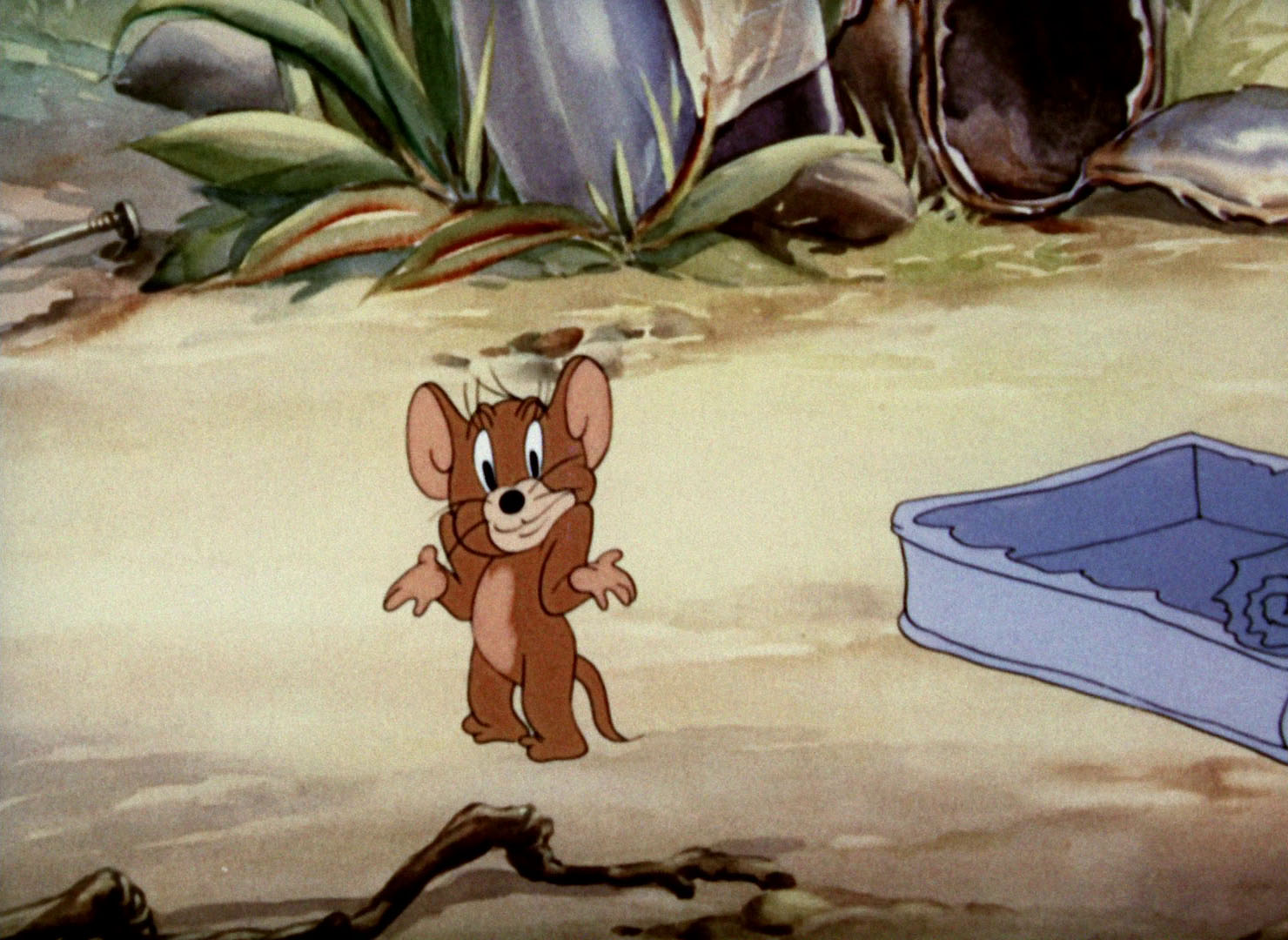 Tom Amp Jerry Pictures Quot Sufferin Cats Quot