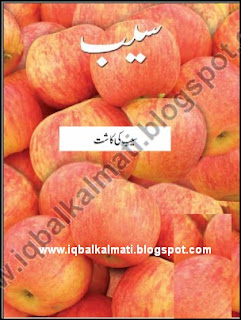 Apple Plant Cultivation Booklet In Urdu PDF Download