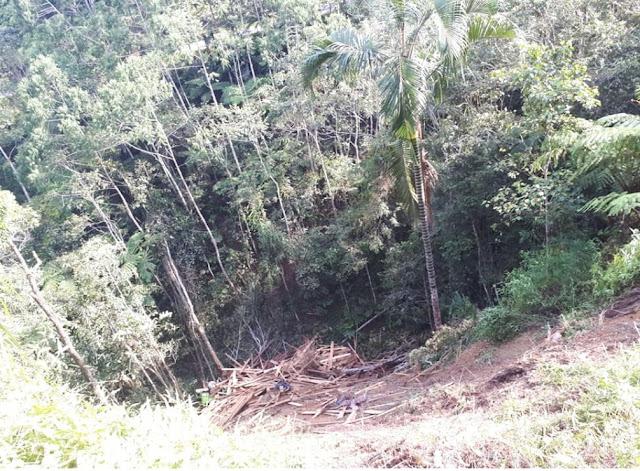 [FOTO] Laka Tunggal Mobil 10 Roda di Jalan Poros Toraja-Palopo, Terjun 100 Meter ke Jurang