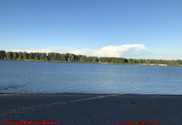 Sauvie Island Collins Beach