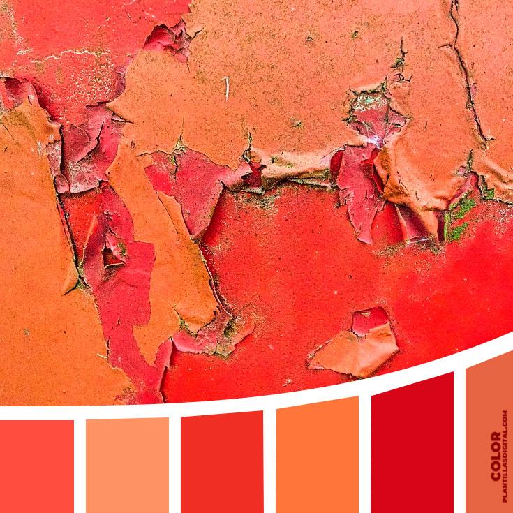 color_386