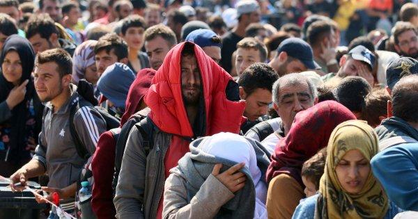 Εξαρθρώθηκε ΜΚΟ που γέμιζε την Ελλάδα με παράνομους μετανάστες έναντι αμοιβής