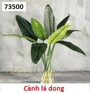 Phu kien hoa pha le o Quan Thanh