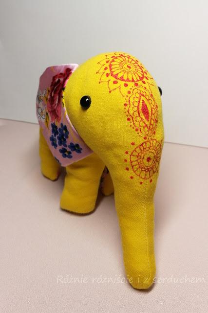 Słoń z frontu