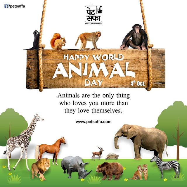 Happy World Animal Day