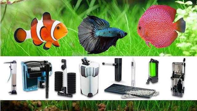 tipos de filtro de acuario