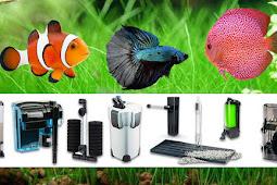 ✎ Tipos de Filtros para Acuario: Filtración  Mecánica, Biológica y Química