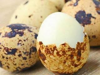 10 Manfaat Telur Puyuh Untuk Ibu Hamil