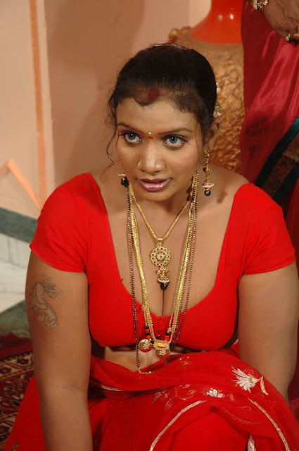 Tamil Desi Mallu Aunty Actress Mallika Hot And Spicy Photo -8142