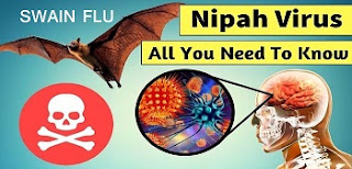 NIPAH VIRUS AND SWAIN FLU STUDY MATERIAL BY KAZI