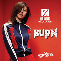 Priscilla Abby 蔡恩雨 Burn Hanyu Pinyin Lyrics