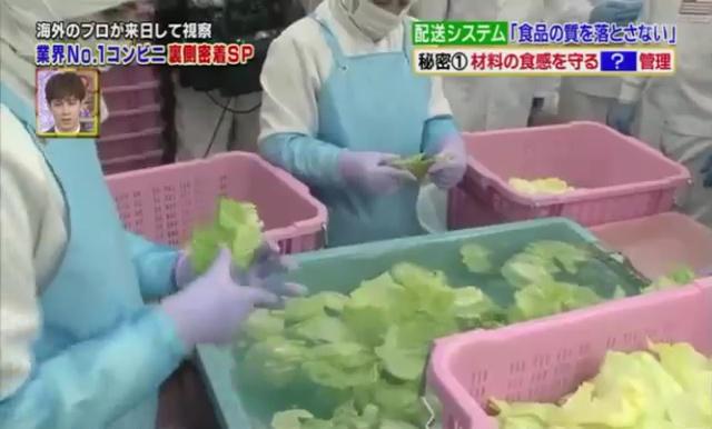Lavage des salades à la main à 7 Eleven