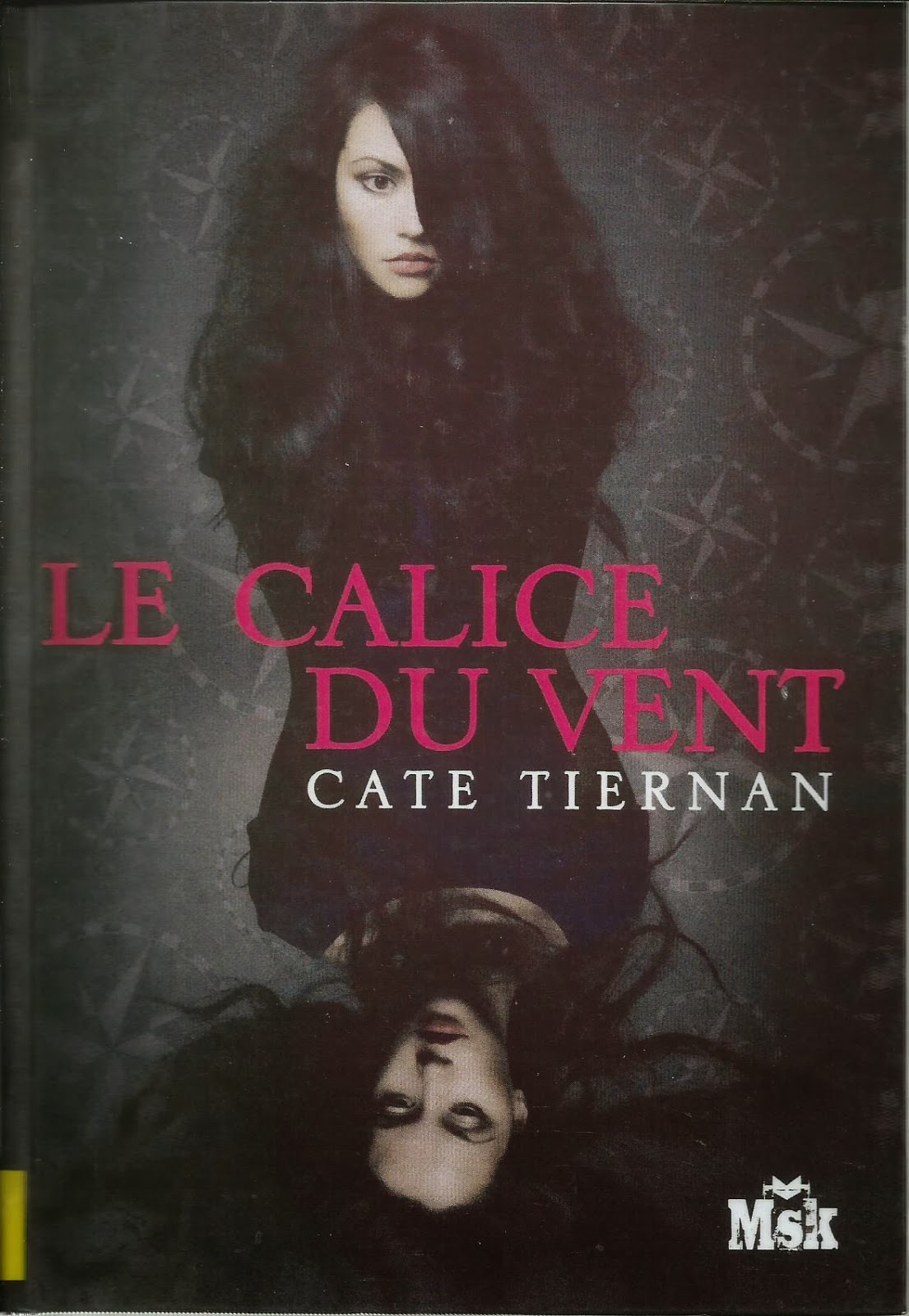 Balefire tome 1 : le calice du vent (Cate Tiernan)
