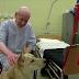 Θεραπευτικός σκύλος σε φυλακή...