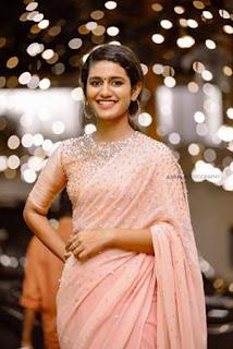 Priya Varrier Saree Pos 3