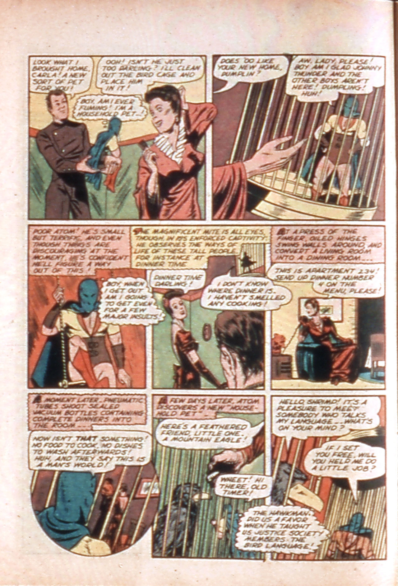 All-Star Comics (1940) issue 10 - Page 22