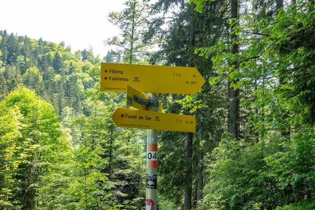 Von Hof bei Salzburg auf den Filbling  Wandern in der FuschlseeRegion 09