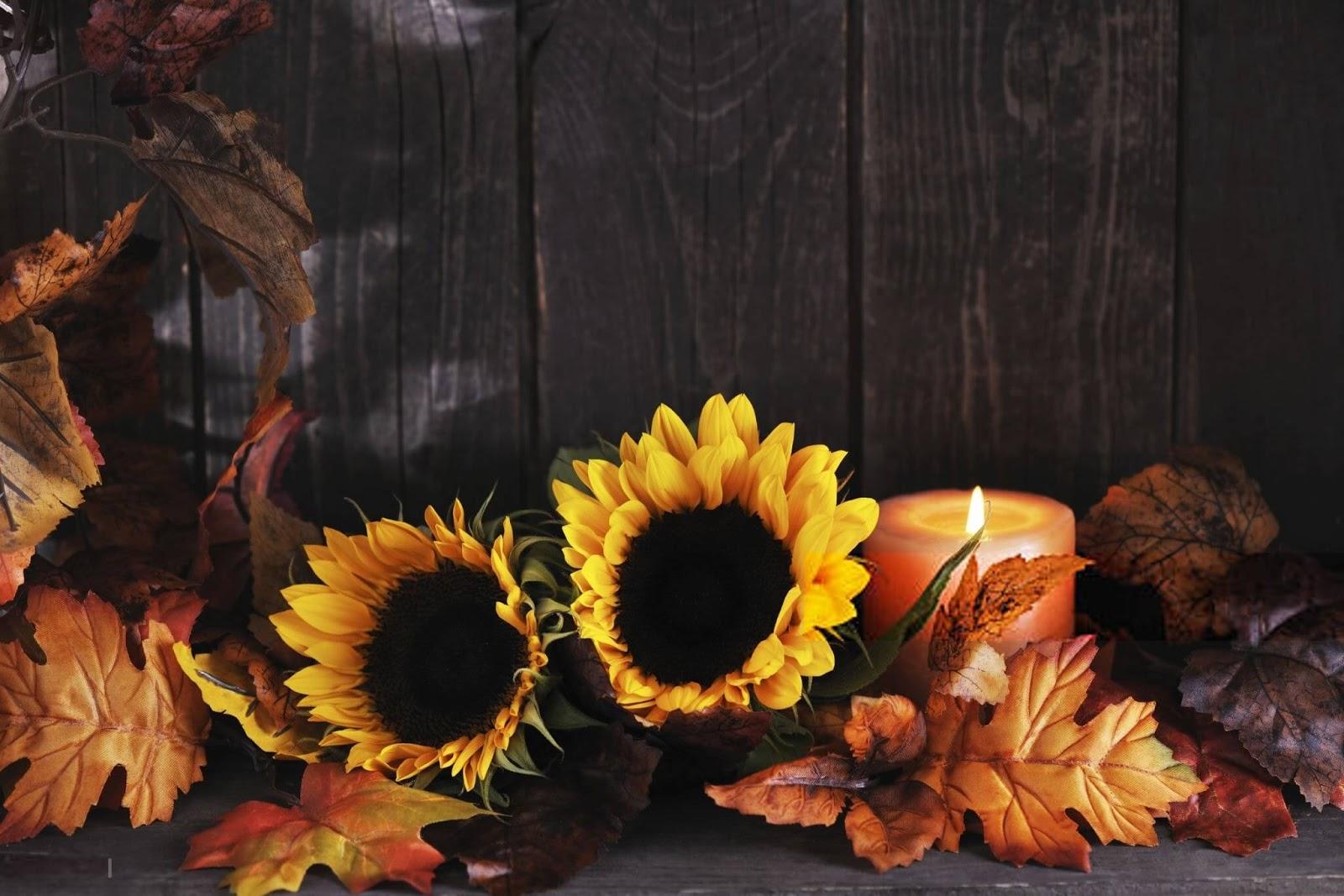 Free Thanksgiving Wallpaper, Thanksgiving Wallpaper Free