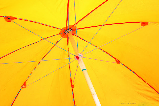 Minimalist Photo of Yellow Umbrella